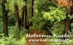 В Киевских парках будут рассыпать ядовитый порошок