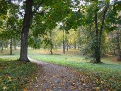 Парк на Дарнице вернут киевлянам