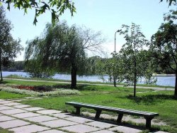 В Киеве состоится водно-спортивный фестиваль