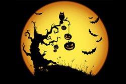 Праздник Хелловин: история, традиции