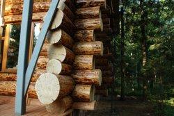 Проекты домов из бревна – новый тренд в загородном строительстве