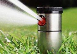 Распылитель для полива грядок и газонов – незаменимый помощник