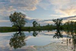 Озеро на Троещине облагородят
