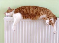 В этом году киевлянам придется платить за отопление большую сумму