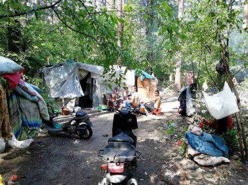 Цыгане захватывают Голосеевский парк