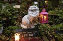 В Деснянском районе Киева построят кладбище домашних животных
