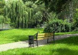 В Киеве увеличится количество мест для отдыха, которые внесут в природно-заповедный фонд