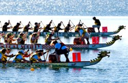 На Оболонской набережной будут соревноваться в гребле на лодках