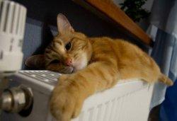 Наконец-то дождались: мэр Кличко разрешил отключить отопление